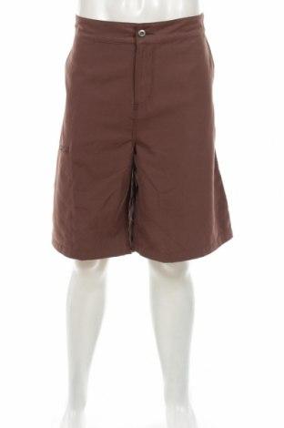 Pantaloni scurți de bărbați Horny Toad