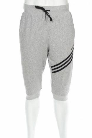 Мъжко спортно долнище Adidas Neo
