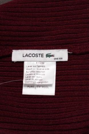 Čiapka Lacoste - za výhodnú cenu na Remix -  101558970 0ed13bea04a