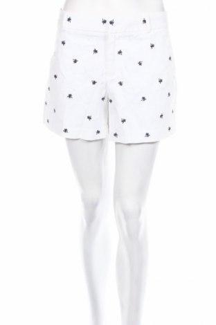Дамски къс панталон Banana Republic, Размер L, Цвят Бял, 98% памук, 2% еластан, Цена 34,00лв.