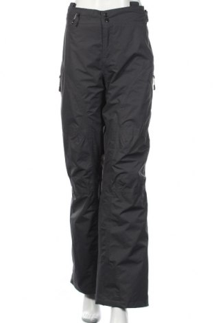 Дамски панталон за зимни спортове, Размер XL, Цвят Сив, Полиестер, Цена 15,50лв.