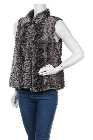 Γυναικείο γιλέκο Gina Laura, Μέγεθος S, Χρώμα Πολύχρωμο, Πολυεστέρας, Τιμή 11,82€