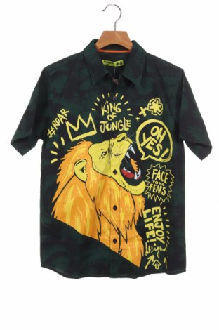 Παιδικό πουκάμισο Desigual, Μέγεθος 12-13y/ 158-164 εκ., Χρώμα Πράσινο, Βαμβάκι, Τιμή 23,13€