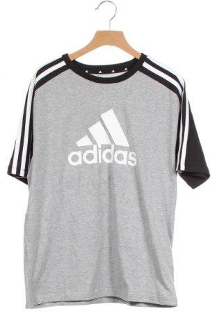 Παιδικό μπλουζάκι Adidas, Μέγεθος 14-15y/ 168-170 εκ., Χρώμα Γκρί, Βαμβάκι, ελαστάνη, Τιμή 16,12€