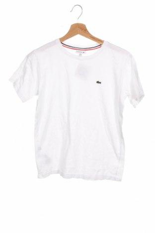 Παιδικό μπλουζάκι Lacoste, Μέγεθος 13-14y/ 164-168 εκ., Χρώμα Λευκό, Βαμβάκι, Τιμή 20,32€