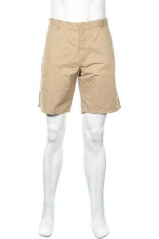 Мъжки къс панталон Indicode, Размер XL, Цвят Кафяв, Памук, Цена 42,00лв.