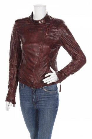 Γυναικείο δερμάτινο μπουφάν Montgomery, Μέγεθος S, Χρώμα Κόκκινο, Γνήσιο δέρμα, Τιμή 42,57€