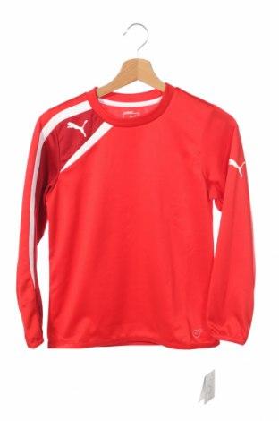 Детска спортна блуза PUMA, Размер 9-10y/ 140-146 см, Цвят Червен, Полиестер, Цена 20,65лв.