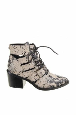 Dámské boty  Steve Madden, Velikost 36, Barva Vícebarevné, Eko kůže, Cena  893,00Kč