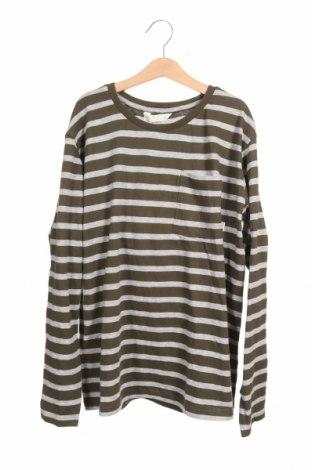 Παιδική μπλούζα Mango, Μέγεθος 10-11y/ 146-152 εκ., Χρώμα Πράσινο, 90% βαμβάκι, 10% βισκόζη, Τιμή 16,24€