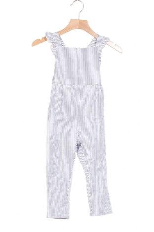 Παιδική σαλοπέτα Little Celebs, Μέγεθος 18-24m/ 86-98 εκ., Χρώμα Μπλέ, Βαμβάκι, Τιμή 7,58€