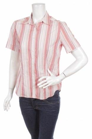 Γυναικείο πουκάμισο Eterna, Μέγεθος M, Χρώμα Ρόζ , Βαμβάκι, Τιμή 12,99€