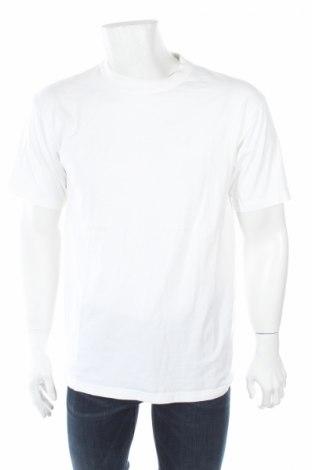 Męski T-shirt Kirkland