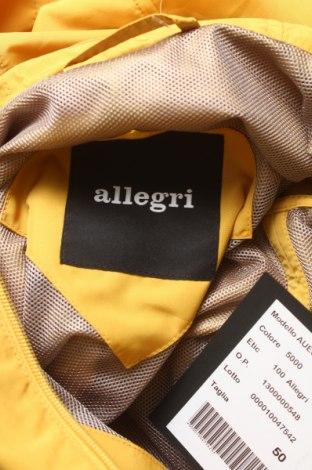 Pánska vesta  Allegri