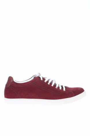 Pánske topánky Roy Robson