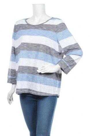 Γυναικεία μπλούζα Suzanne Grae, Μέγεθος XL, Χρώμα Μπλέ, Πολυεστέρας, βισκόζη, Τιμή 8,83€