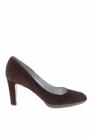 Дамски обувки Sergio Rossi, Размер 37, Цвят Кафяв, Естествен велур, Цена 85,30лв.