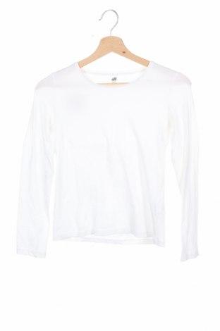 Детска блуза H&M, Размер 10-11y/ 146-152 см, Цвят Бял, 5% памук, 5% еластан, Цена 18,90лв.