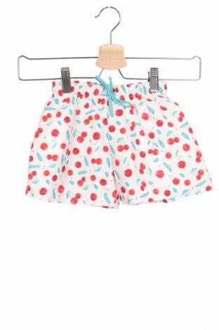 Детски къс панталон Little Celebs, Размер 18-24m/ 86-98 см, Цвят Многоцветен, Полиестер, Цена 6,86лв.