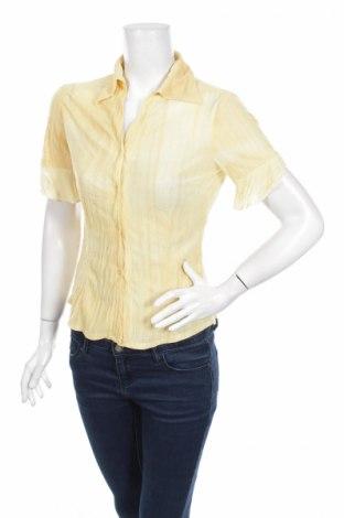 Γυναικείο πουκάμισο Hashun, Μέγεθος L, Χρώμα Κίτρινο, 65% πολυεστέρας, 35% βαμβάκι, Τιμή 10,82€