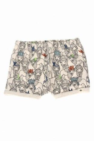 Pantaloni scurți de copii Billybandit, Mărime 6-9m/ 68-74 cm, Culoare Bej, 80% bumbac, 20% poliester, Preț 48,39 Lei