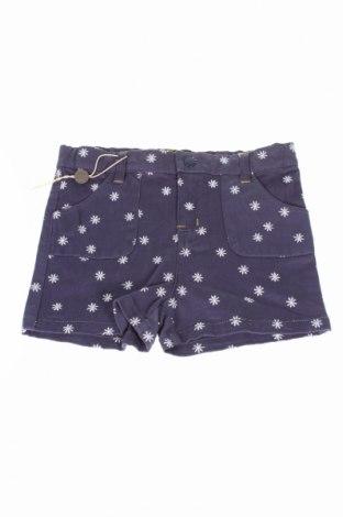 Pantaloni scurți de copii Margherita, Mărime 5-6y/ 116-122 cm, Culoare Albastru, 98% bumbac, 2% elastan, Preț 48,39 Lei