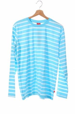 Детска блуза Cfl Colors for life, Размер 15-18y/ 170-176 см, Цвят Син, Памук, Цена 8,40лв.