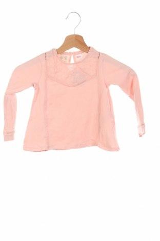 Bluză de copii Zara, Mărime 18-24m/ 86-98 cm, Culoare Roz, 95% bumbac, 5% elastan, Preț 47,37 Lei