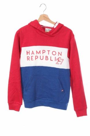 Dziecięca bluza Hampton Republic, Rozmiar 14-15y/ 168-170 cm, Kolor Kolorowy, 80% bawełna, 20% poliester, Cena 48,45zł