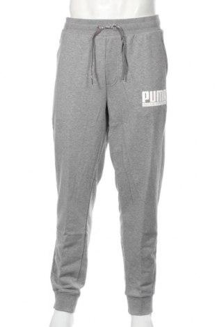 Pantaloni trening de bărbați PUMA, Mărime XL, Culoare Gri, 96% bumbac, 4% elastan, Preț 149,68 Lei