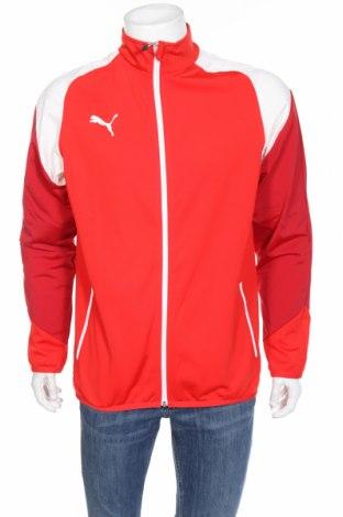 Мъжко спортно горнище PUMA, Размер L, Цвят Червен, Полиестер, Цена 66,24лв.