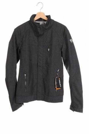 Мъжко спортно яке Icepeak, Размер L, Цвят Сив, Полиестер, Цена 79,00лв.