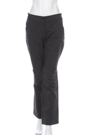 Дамски панталон за зимни спортове Crane, Размер M, Цвят Сив, 91% полиестер, 9% еластан, Цена 13,23лв.