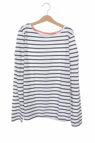Детска блуза Alive, Размер 12-13y/ 158-164 см, Цвят Бял, Памук, Цена 18,90лв.