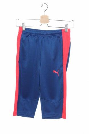 Ανδρικό κοντό παντελόνι PUMA, Μέγεθος XS, Χρώμα Μπλέ, Πολυεστέρας, Τιμή 8,89€