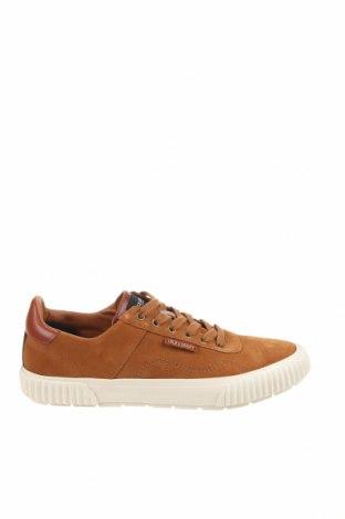 Ανδρικά παπούτσια Lyle & Scott, Μέγεθος 43, Χρώμα Καφέ, Φυσικό σουέτ, Τιμή 43,84€