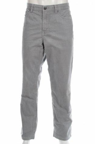 Мъжки панталон Paddock`s