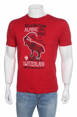 Pánske tričko  Alma Mater