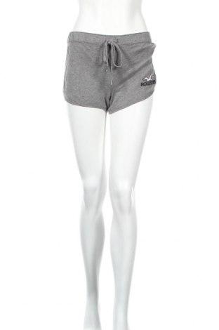 Dámske kraťasy  Hollister, Veľkosť S, Farba Sivá, 60% bavlna, 40% polyester, Cena  12,62€