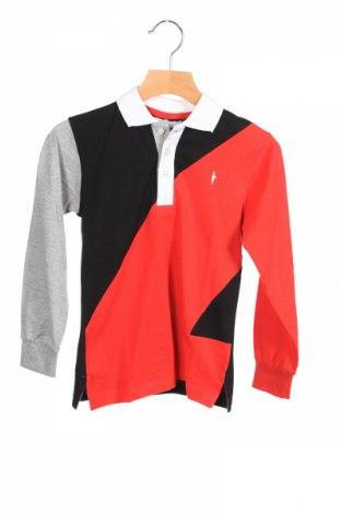 Детска блуза Cesare Paciotti 4US, Размер 5-6y/ 116-122 см, Цвят Многоцветен, Памук, Цена 46,50лв.