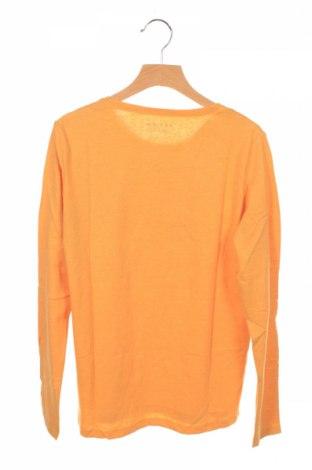 Детска блуза Review, Размер 11-12y/ 152-158 см, Цвят Жълт, 60% памук, 40% полиестер, Цена 10,64лв.