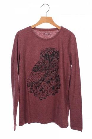 Детска блуза Review, Размер 13-14y/ 164-168 см, Цвят Червен, 60% памук, 40% полиестер, Цена 9,50лв.