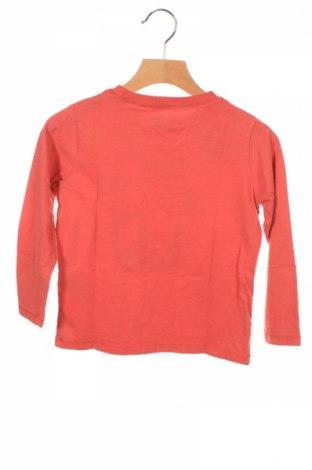 Детска блуза Review, Размер 3-4y/ 104-110 см, Цвят Оранжев, 100% памук, Цена 27,00лв.