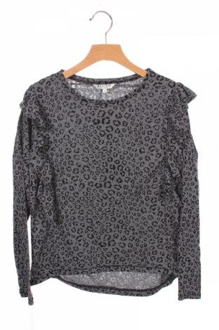Детска блуза Review, Размер 9-10y/ 140-146 см, Цвят Сив, 50% памук, 50% полиестер, Цена 28,50лв.