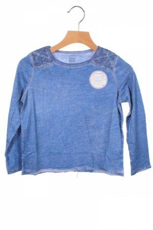 Детска блуза Review, Размер 3-4y/ 104-110 см, Цвят Син, 100% памук, Цена 8,74лв.