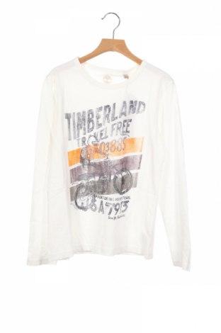 Детска блуза Timberland, Размер 10-11y/ 146-152 см, Цвят Бял, Памук, Цена 59,25лв.
