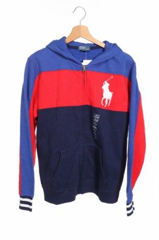 Dětská mikina  Ralph Lauren, Rozměr 15-18y/ 170-176 cm, Barva Červená, 87% bavlna, 13% polyester, Cena  1015,00Kč
