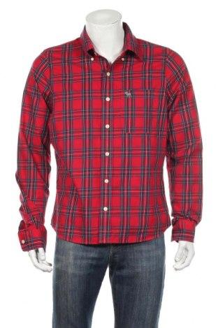 Pánska košeľa  Abercrombie & Fitch, Veľkosť L, Farba Viacfarebná, Bavlna, Cena  12,93€
