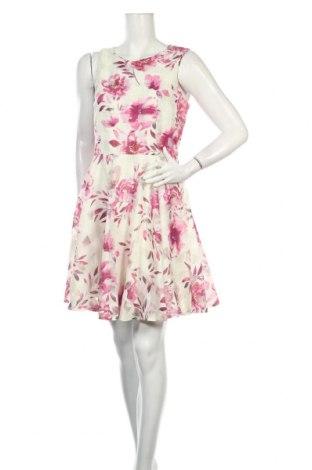 Šaty  Apricot, Veľkosť L, Farba Viacfarebná, Polyester, Cena  23,01€