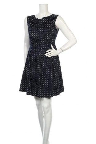 Šaty  Apricot, Veľkosť L, Farba Modrá, 97% bavlna, 3% elastan, Cena  19,30€